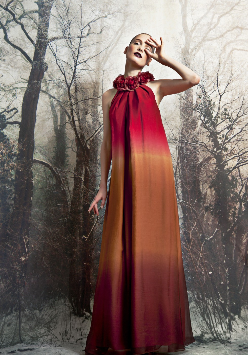 Chiffon gown with degrade' shading